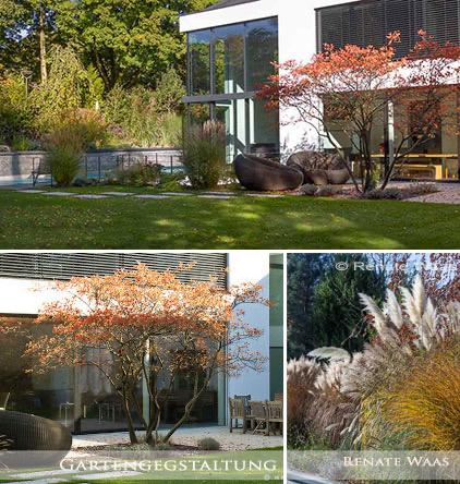 Moderner Garten Mit Gräsern Gartenplanung Renate Waas