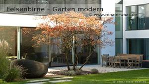 Gartengestaltung - Gartendesign - Gartenplanung München Renate Waas