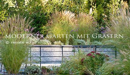 moderner garten mit graeser bepflanzung wasserbecken holzdeck. Black Bedroom Furniture Sets. Home Design Ideas