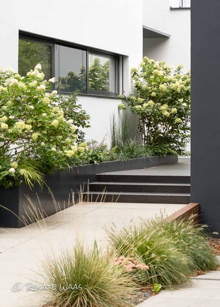 vorgarten modern gestalten und pflegeleicht bepflanzen. Black Bedroom Furniture Sets. Home Design Ideas